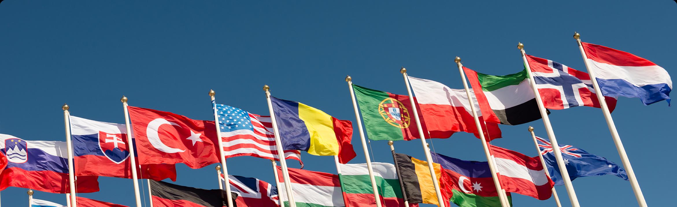 UNDP Flags